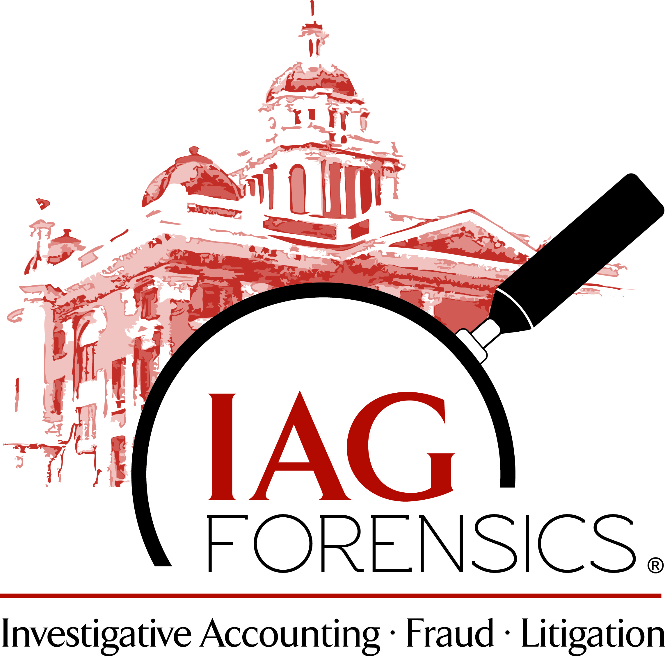 forensic accounting and fraud investigation pdf